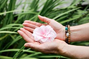 Blüte in offenen Händen